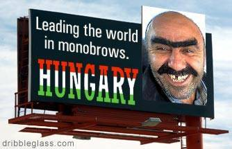 Hungarian Eyebrows